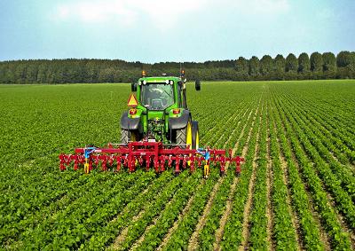 L'aumento del dollaro rafforza l'agricoltura UE
