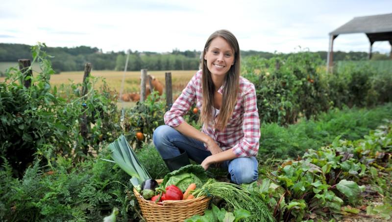 Agricoltura-e-giovani-PD-e1409570637704.jpg
