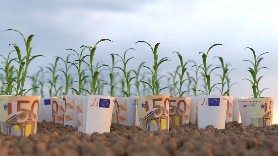 agevolazioni-agricoltura-legge-bilancio-2020.jpg