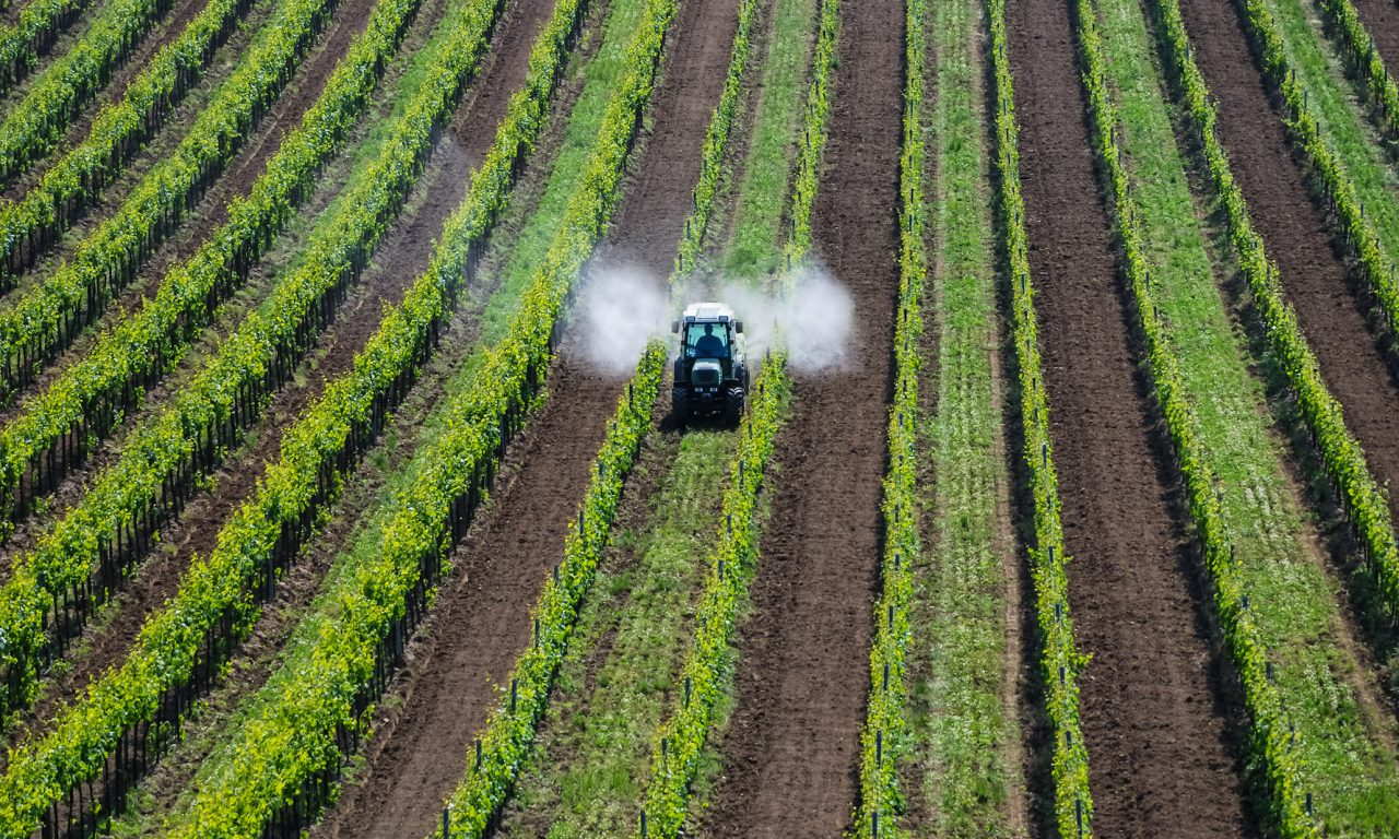 agricoltura-ue-1280x768.jpg