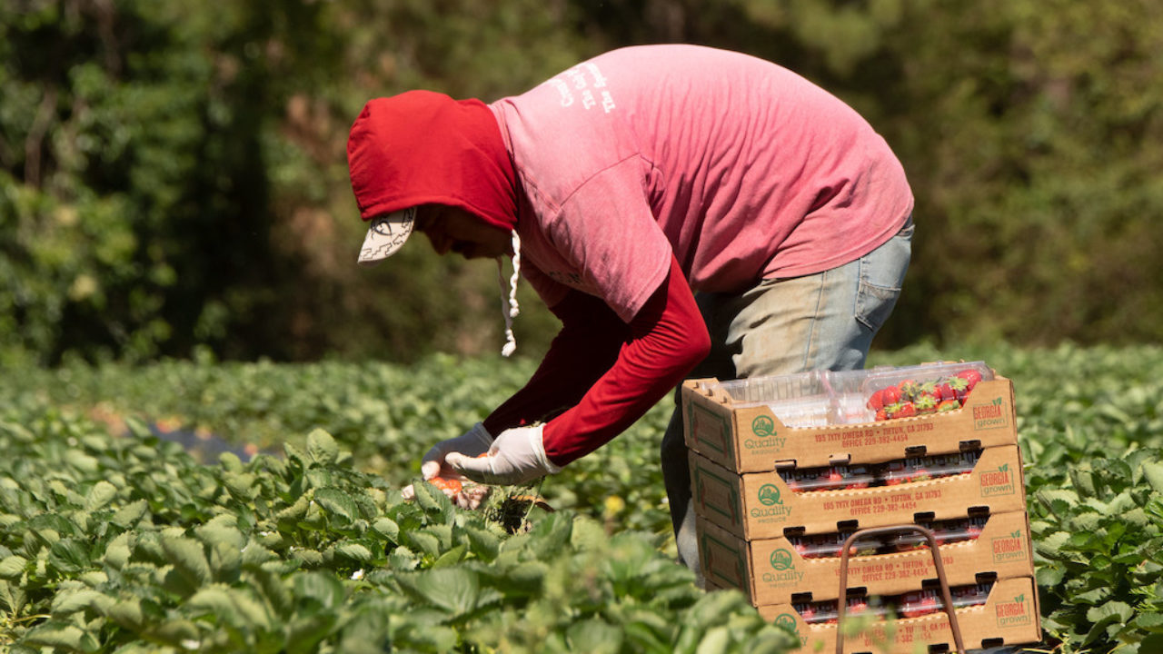 esonero-contributi-agricoltura.jpg
