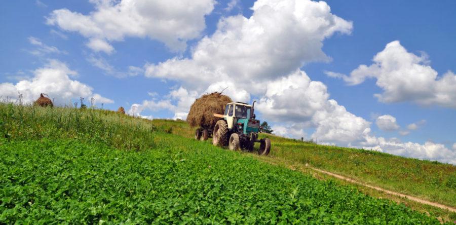 agricoltura-milleproroghe.jpg