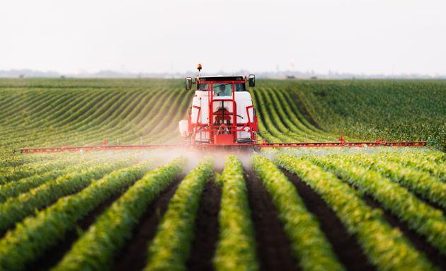 pesticidi.jpeg