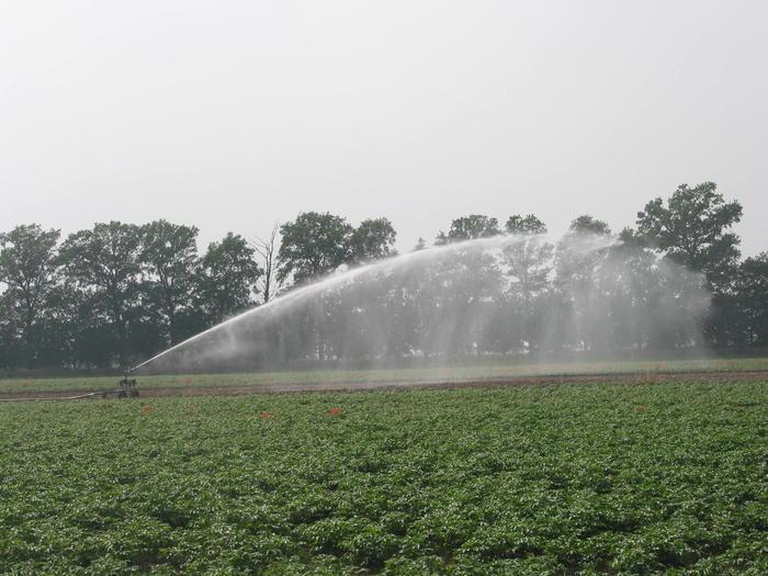 acqua-agricoltura.jpg