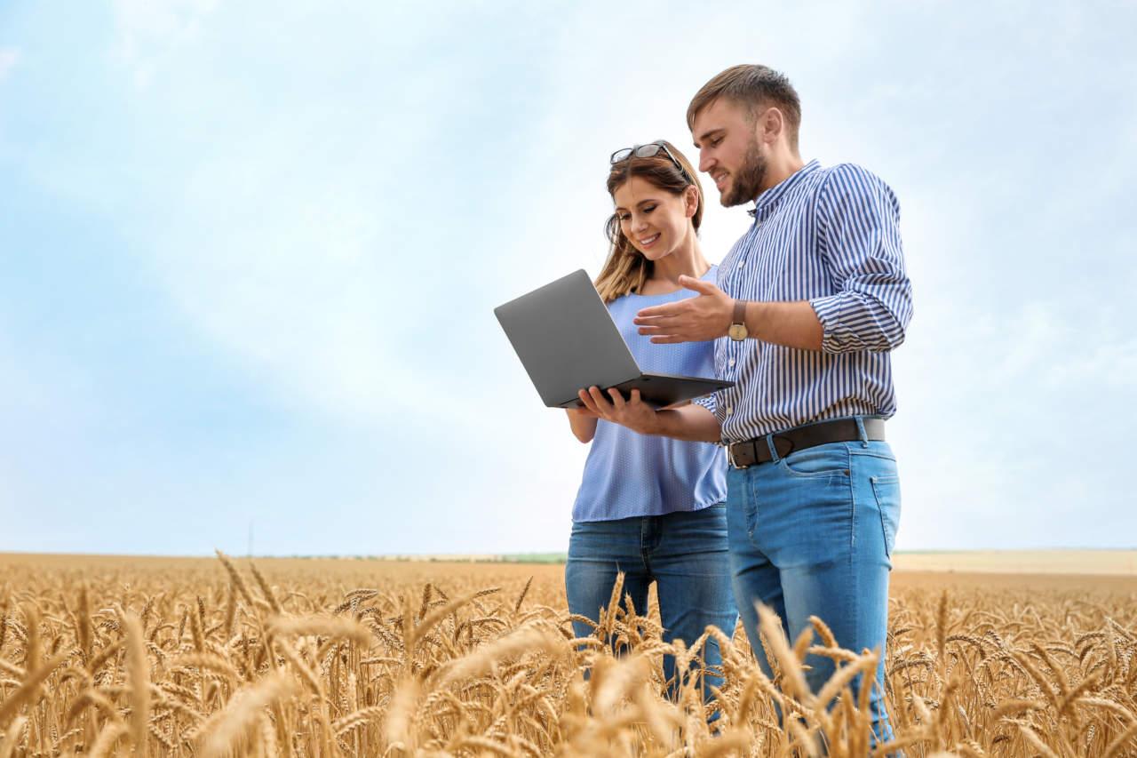 Contributi-Ismea-giovani-agricoltori.jpeg